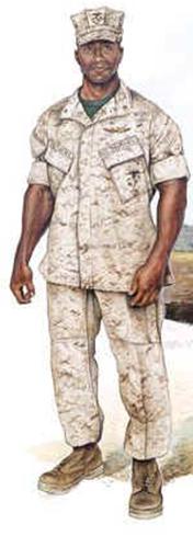 Usmc Uniform Inspections 95